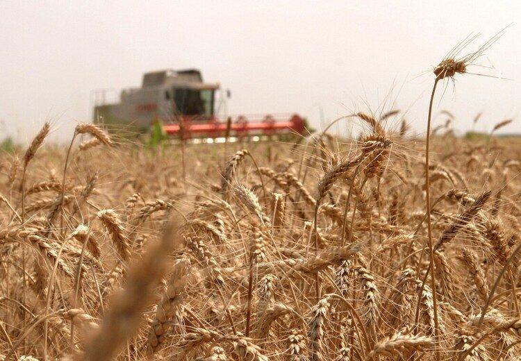 """România, rating """"excepțional"""" pentru recolta agricolă din 2021"""